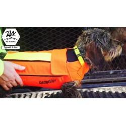 Spécial Teckel - Gilet Canihunt Dog Armor V2